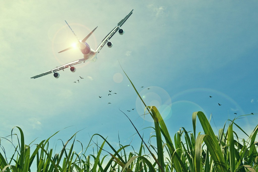 aircraft-465723_1280